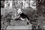 Fabrizio nella casa dell' amica Lorenza, 1964 :: Archivio di Lorenza Bozano